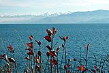 Это такая красота на Байкале.